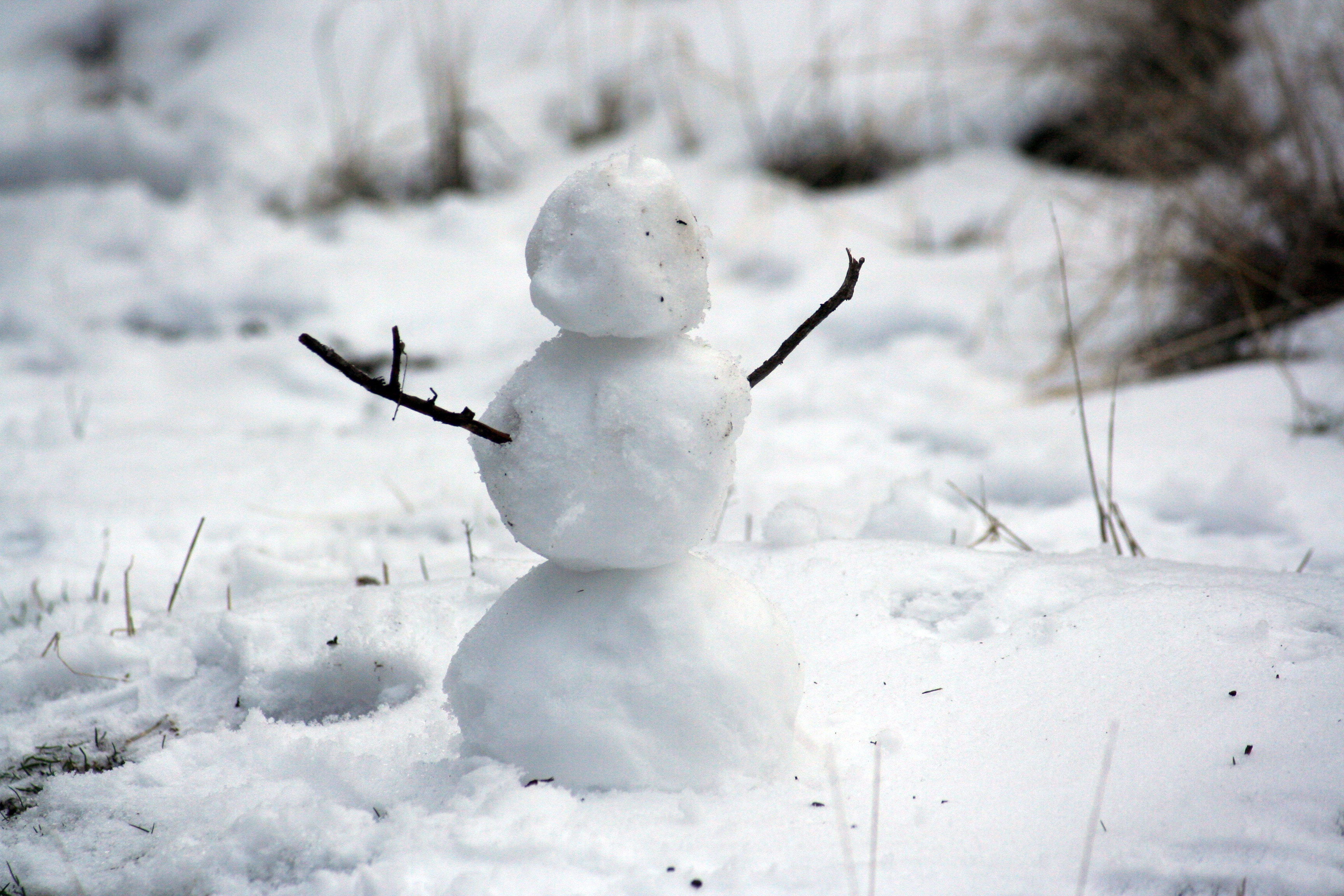 Snowman | Learn holiday vocabulary