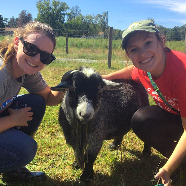 Two volunteer womxn with a rescue goat on grass while smiling