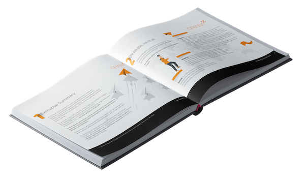Oriana - World of low-code ebook