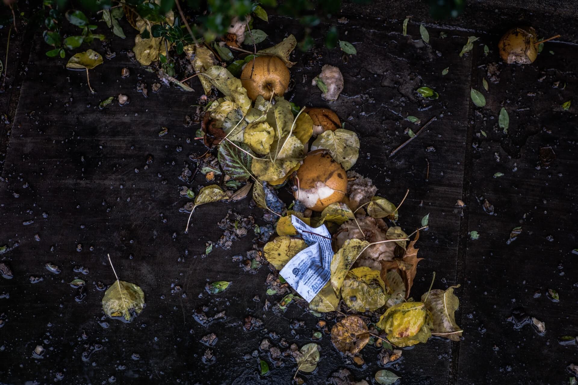 Compost for a Healthier Newburyport