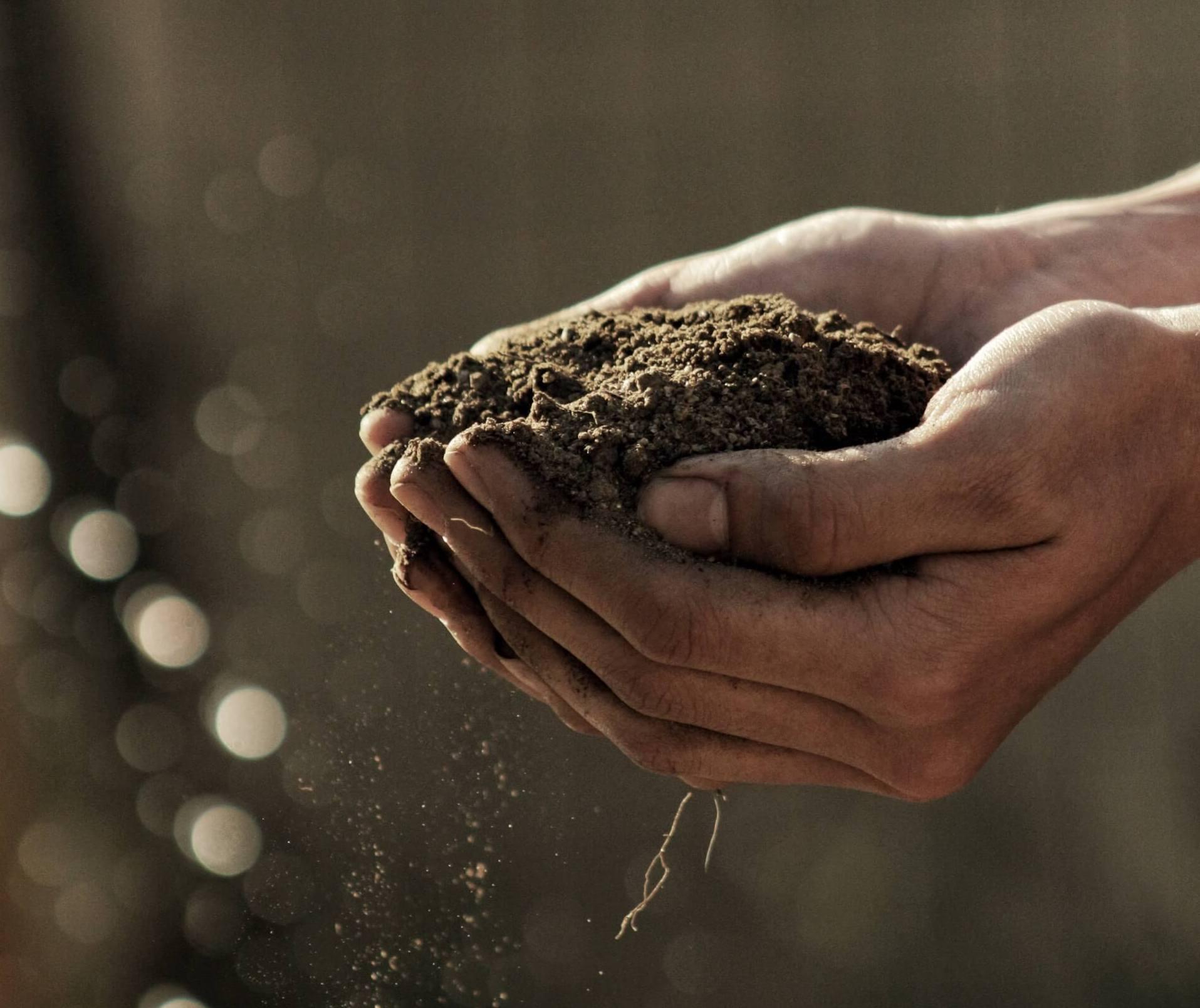 Compost for a Healthier Newburyport Campaign