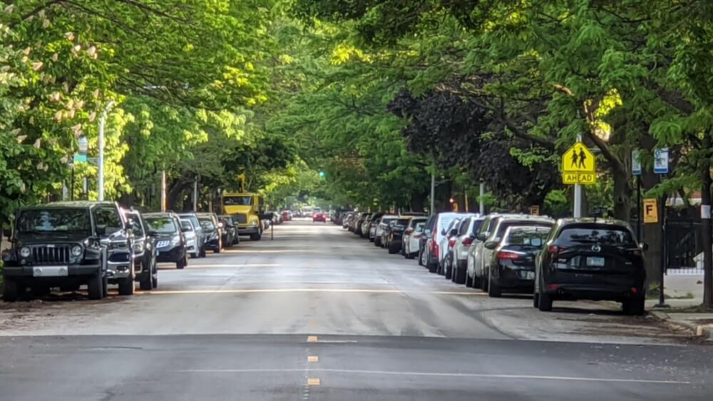 The Impact of a pandemic on the health of our trees