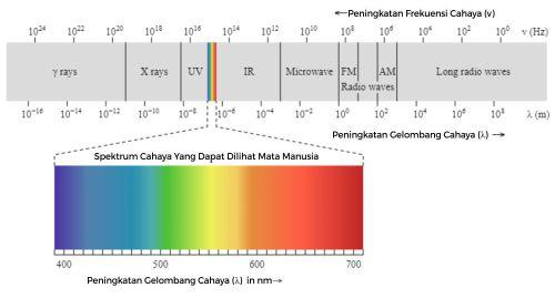 spektrum cahaya, mata manusia terbatas