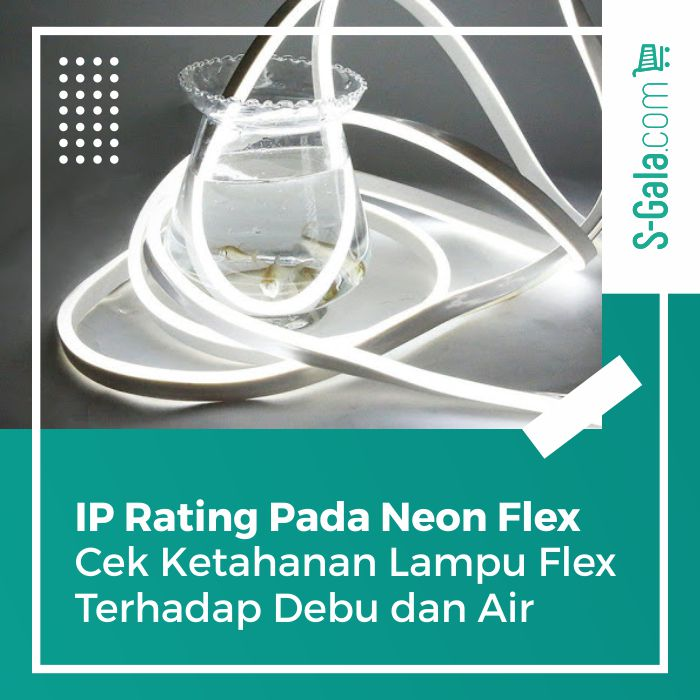 IP Rating Neon Flex