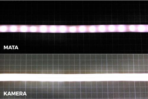 DIY LED neon flex menggunakan selang silicon biasa