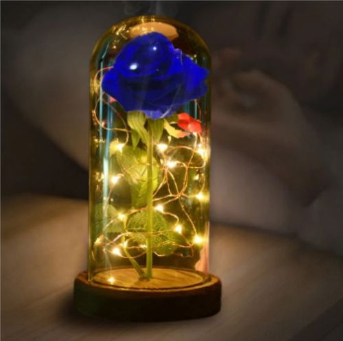 Ide usaha Rose LED Light Dome