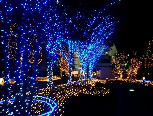 dekorasi pohon dengan lampu tumblr