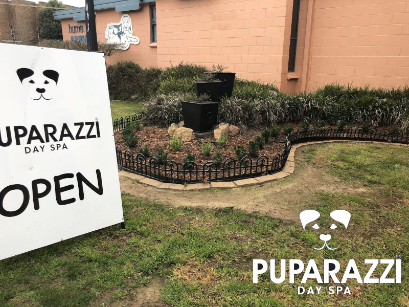 Puparazzi Day Spa Garden in Albury Wodonga