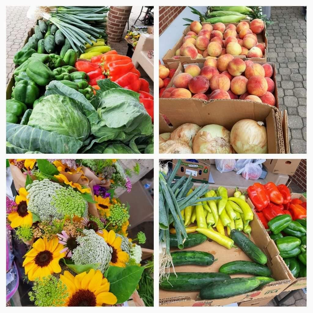 healthy eating for seniors, healthy vegetables, farmers market