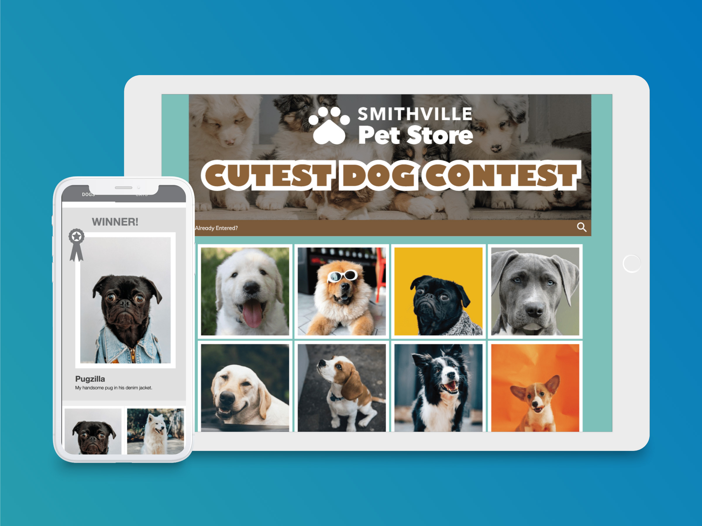 Cutest Dog Photo Contest sponsored by a pet store.