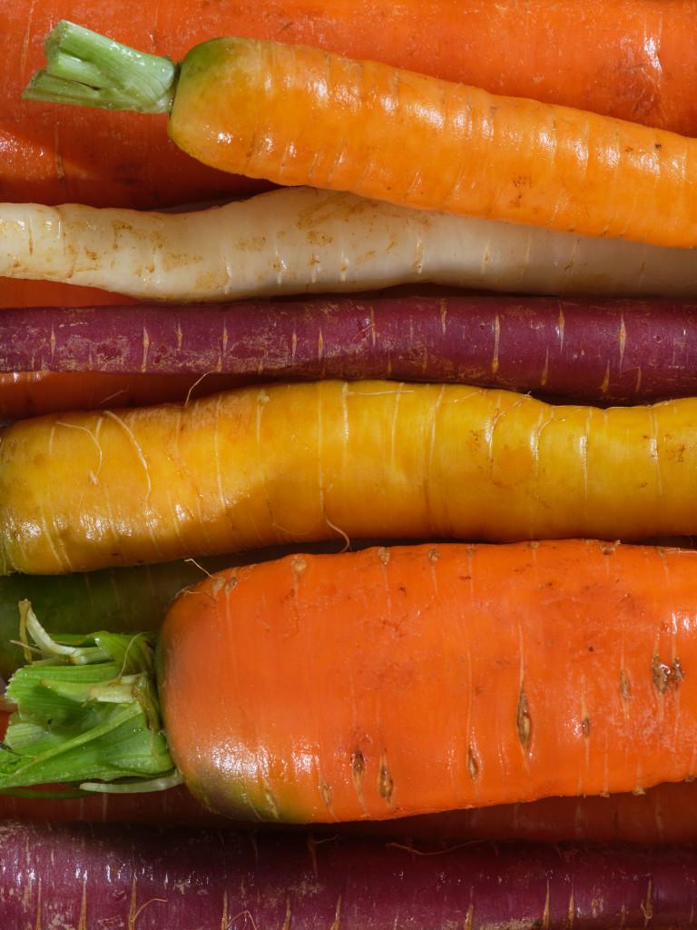 Macro_Carrots-1_72dpi
