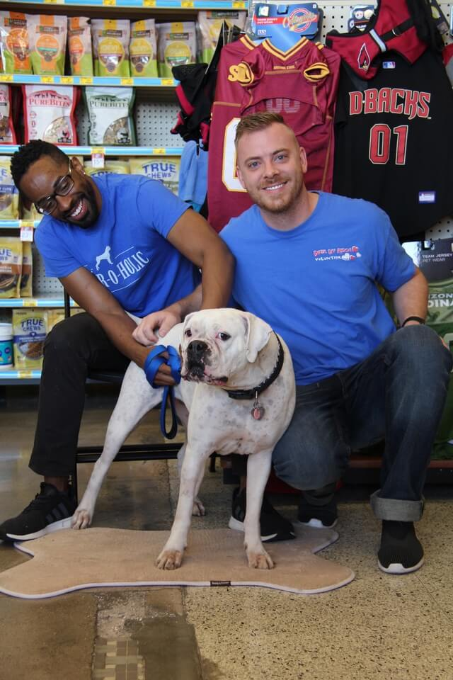 Boxer Luv Rescue volunteers to help Arizona dogs in need