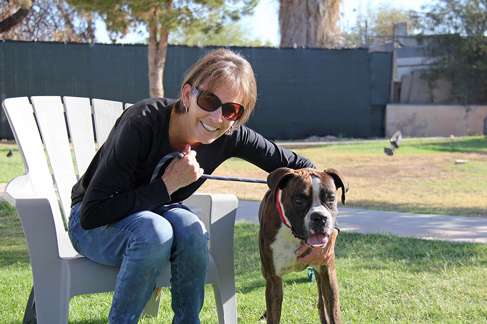 Boxer Luv Rescue - contact us