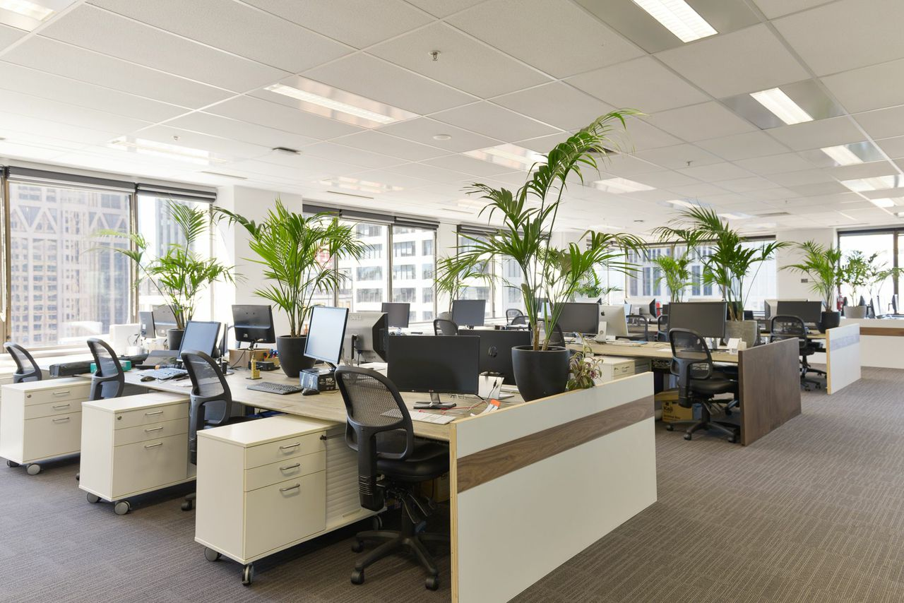 Dedicated Coworking Desk with views of Melbourne CBD