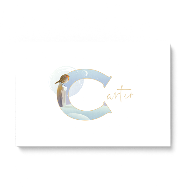 "Illustrated water-colour print of alphabet letter ""C""."