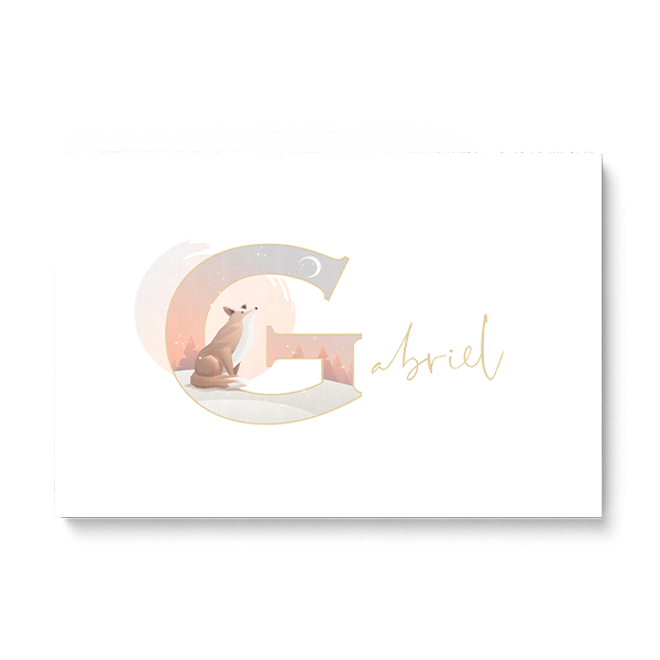 "Illustrated water-colour print of alphabet letter ""G""."