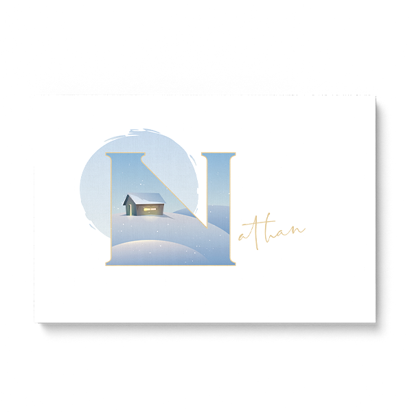"Illustrated water-colour print of alphabet letter ""N""."