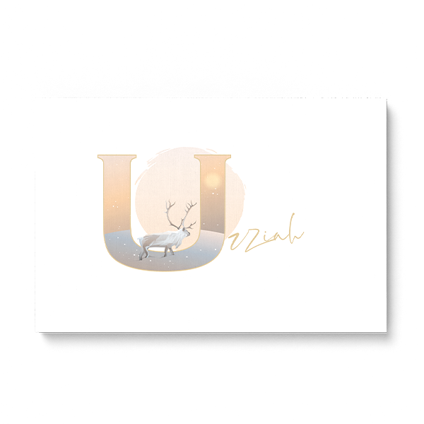 "Illustrated water-colour print of alphabet letter ""U""."
