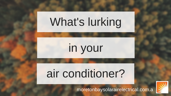 What's lurking in your air conditioner?