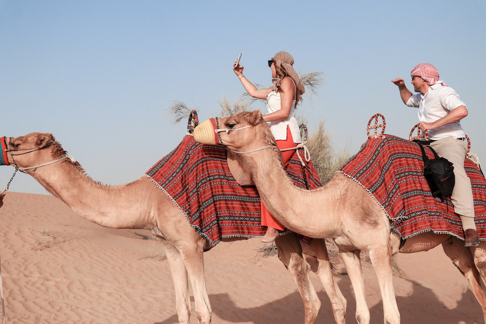 36 Hours In Dubai Desert Camel Safari