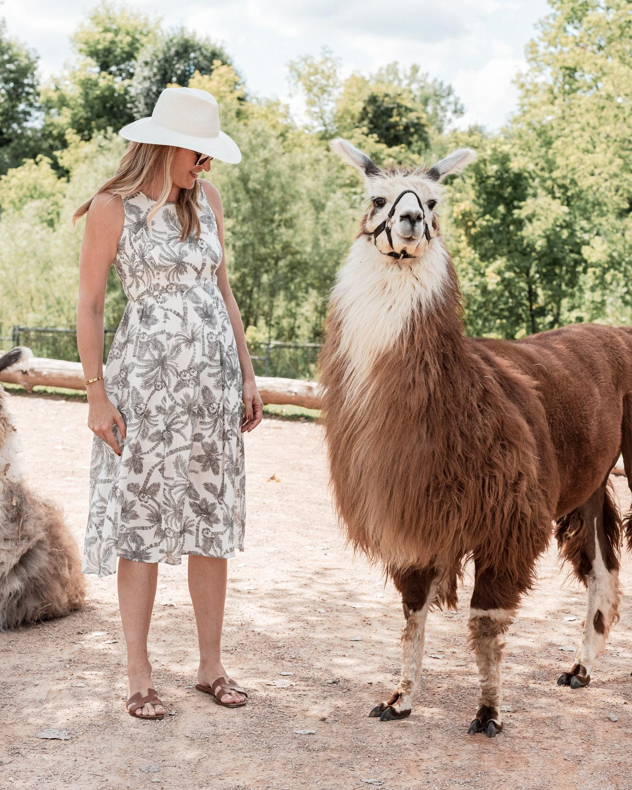 Laura Behnke The Life Actually Company What I Really Wore FatFace Dress Janessa Leone Cezanne