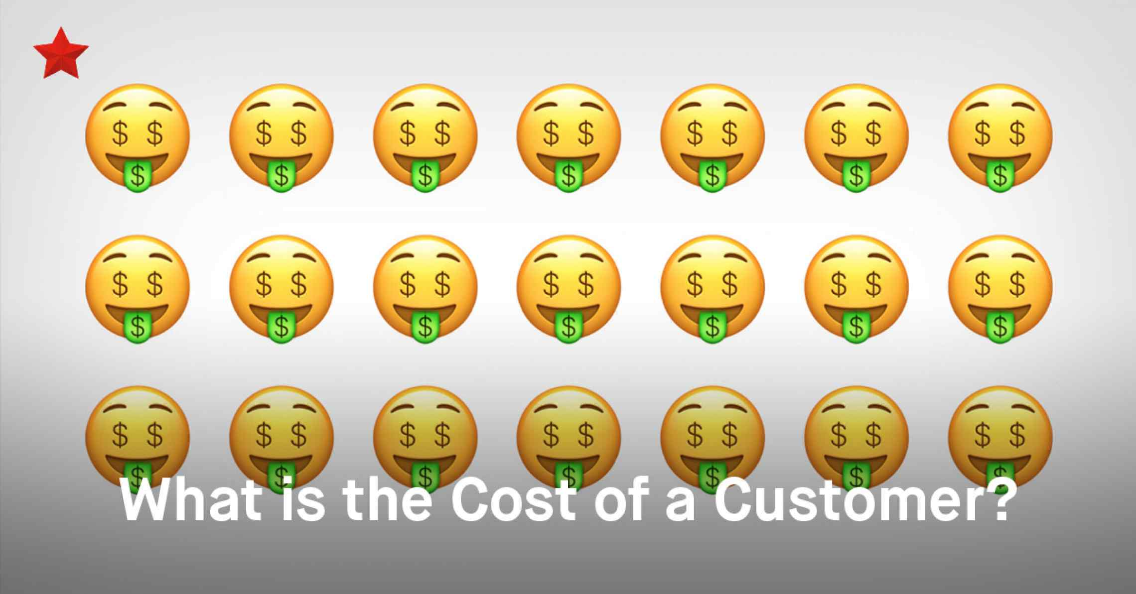 How Much Does a Customer Cost?