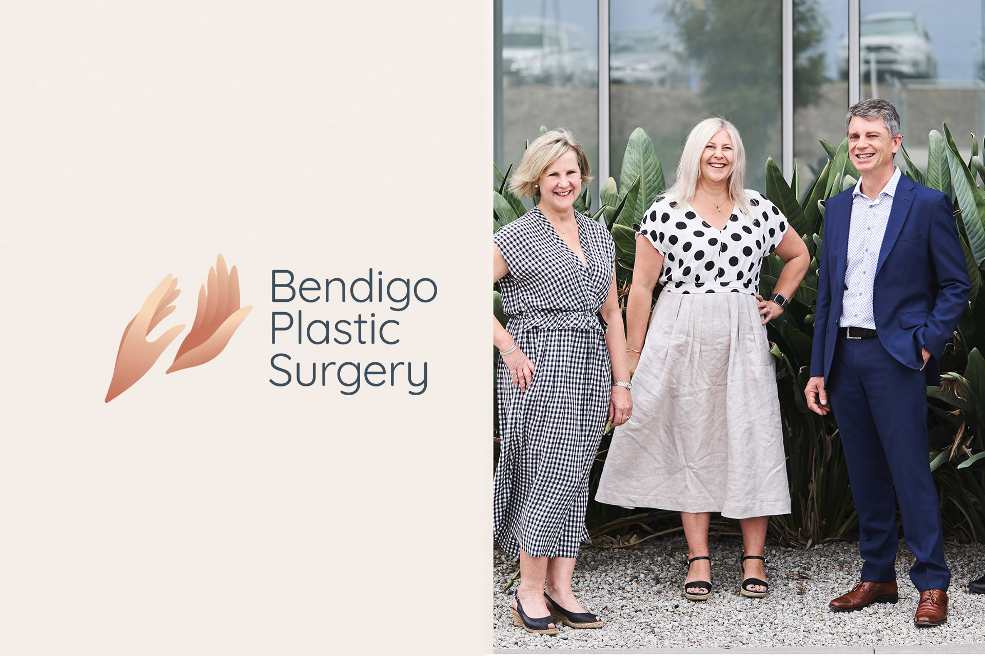 Bendigo Plastic Surgery Logo Colour Palette Refresh and Photographyo