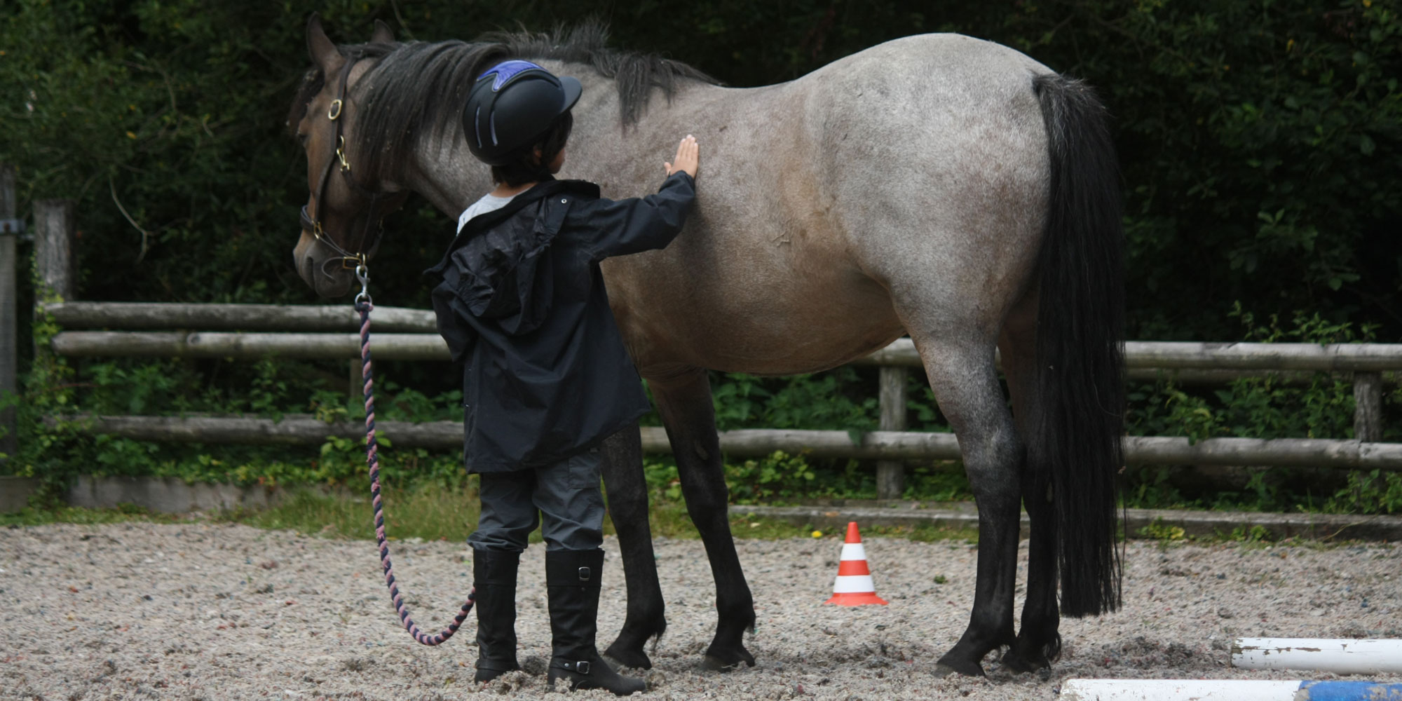Enter the non-judgemental world of the horse