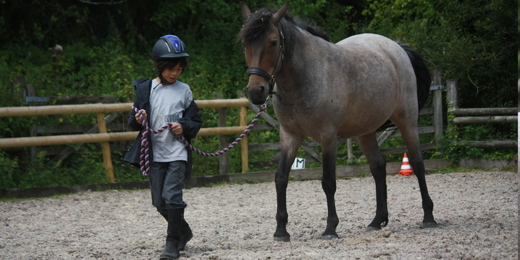 One-to-one sessions with horses
