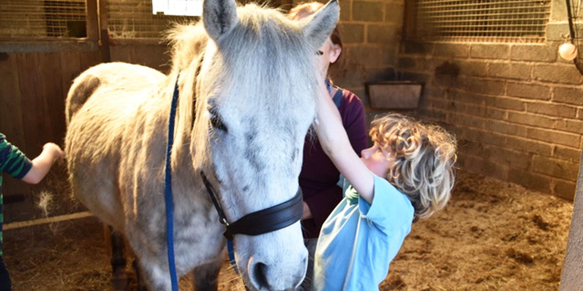 Children with horse