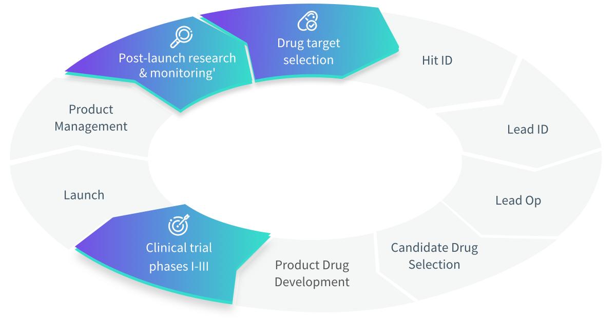 Drug development stages diagram