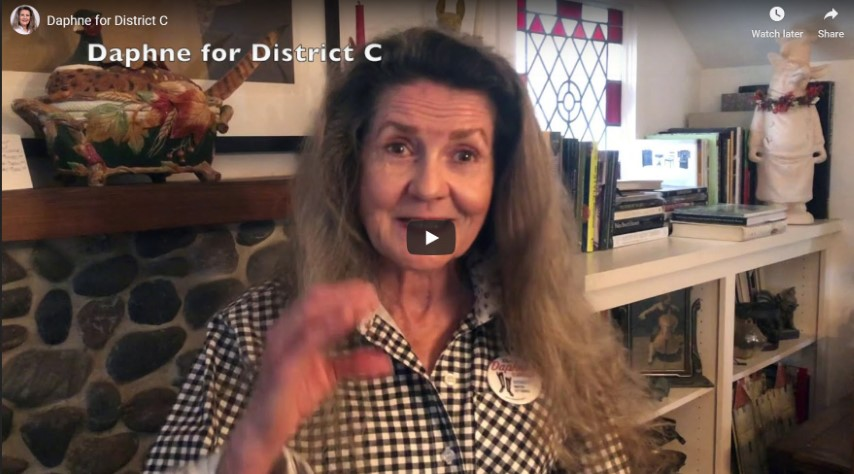 Daphne For District C - Why I am running