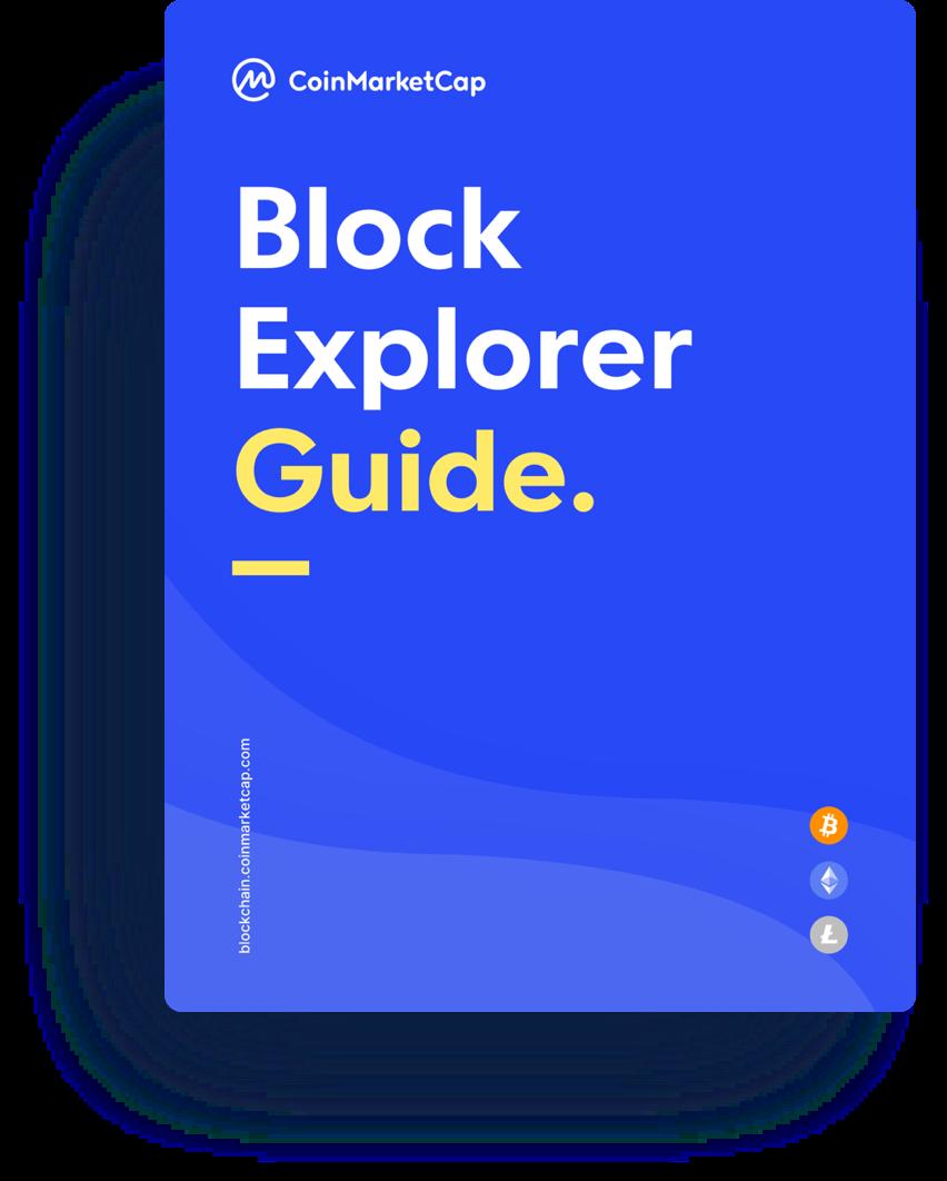 Blockchain Explorer: cos'è e come si usa? Istruzioni, tutorial