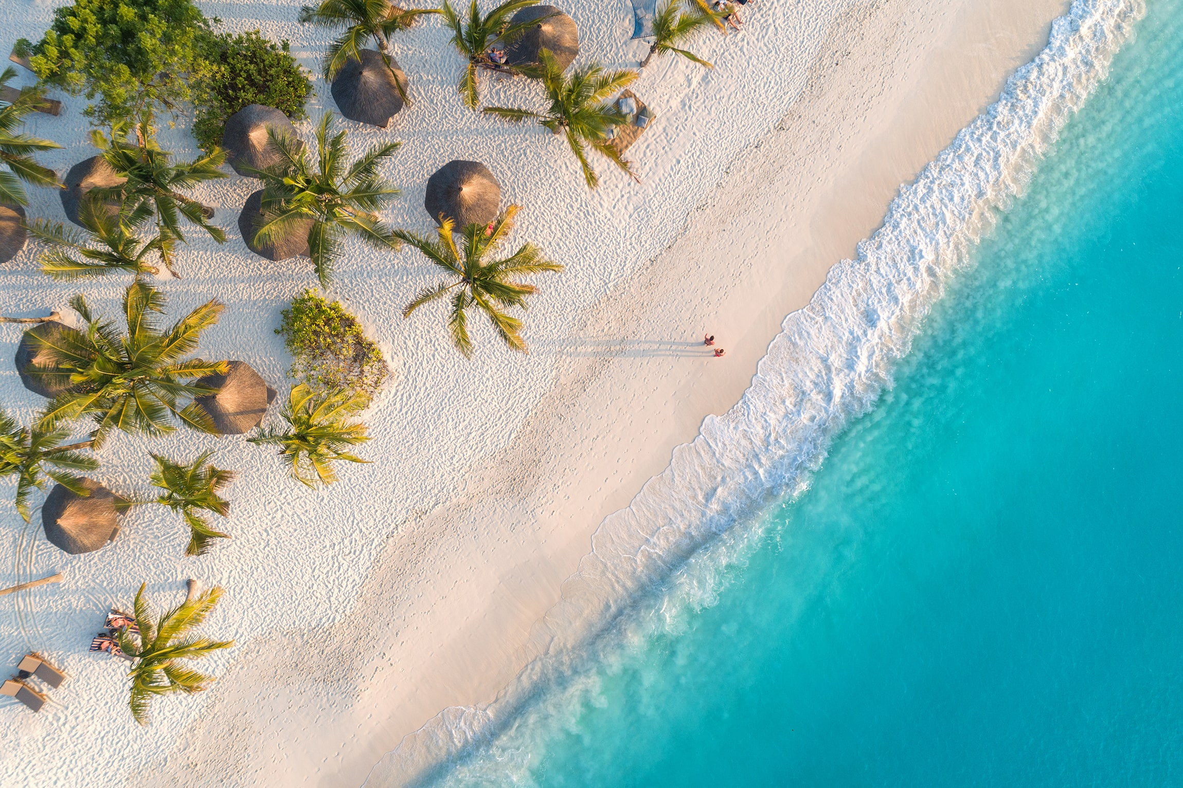 A serene beach as seen from overhead