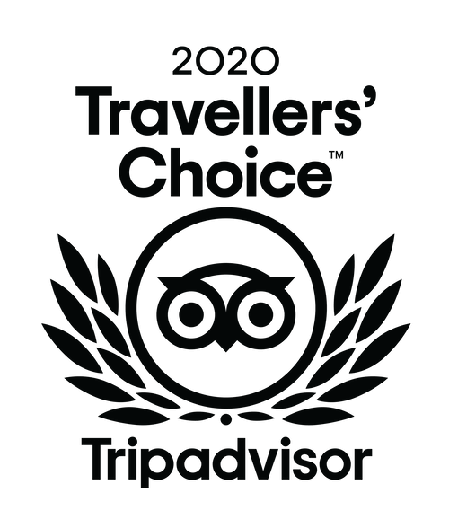 Logo for 2020 Trip Advisor Traveler's Choice Award