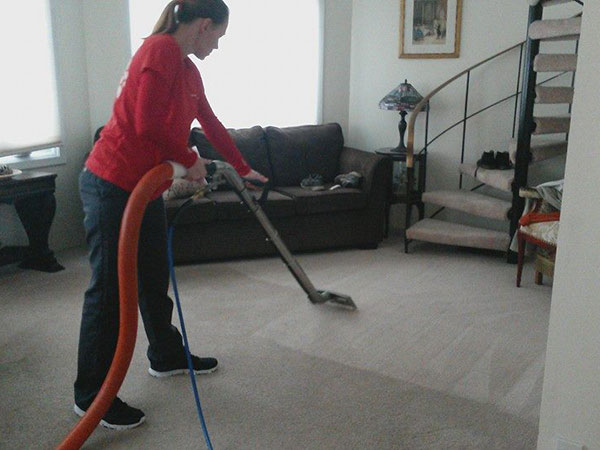 carpet cleaning project by sarrik clean