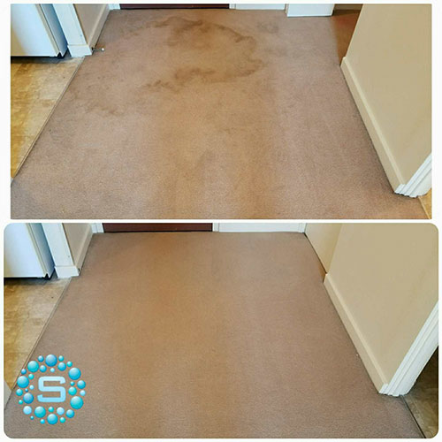 carpet cleaning project before and after