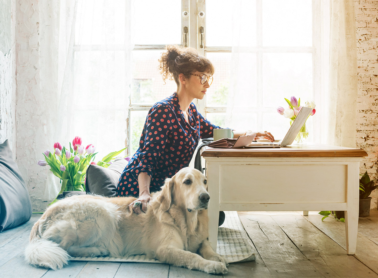 Photo of a woman looking at a laptop with a yellow labrador retriever sleeping next to her
