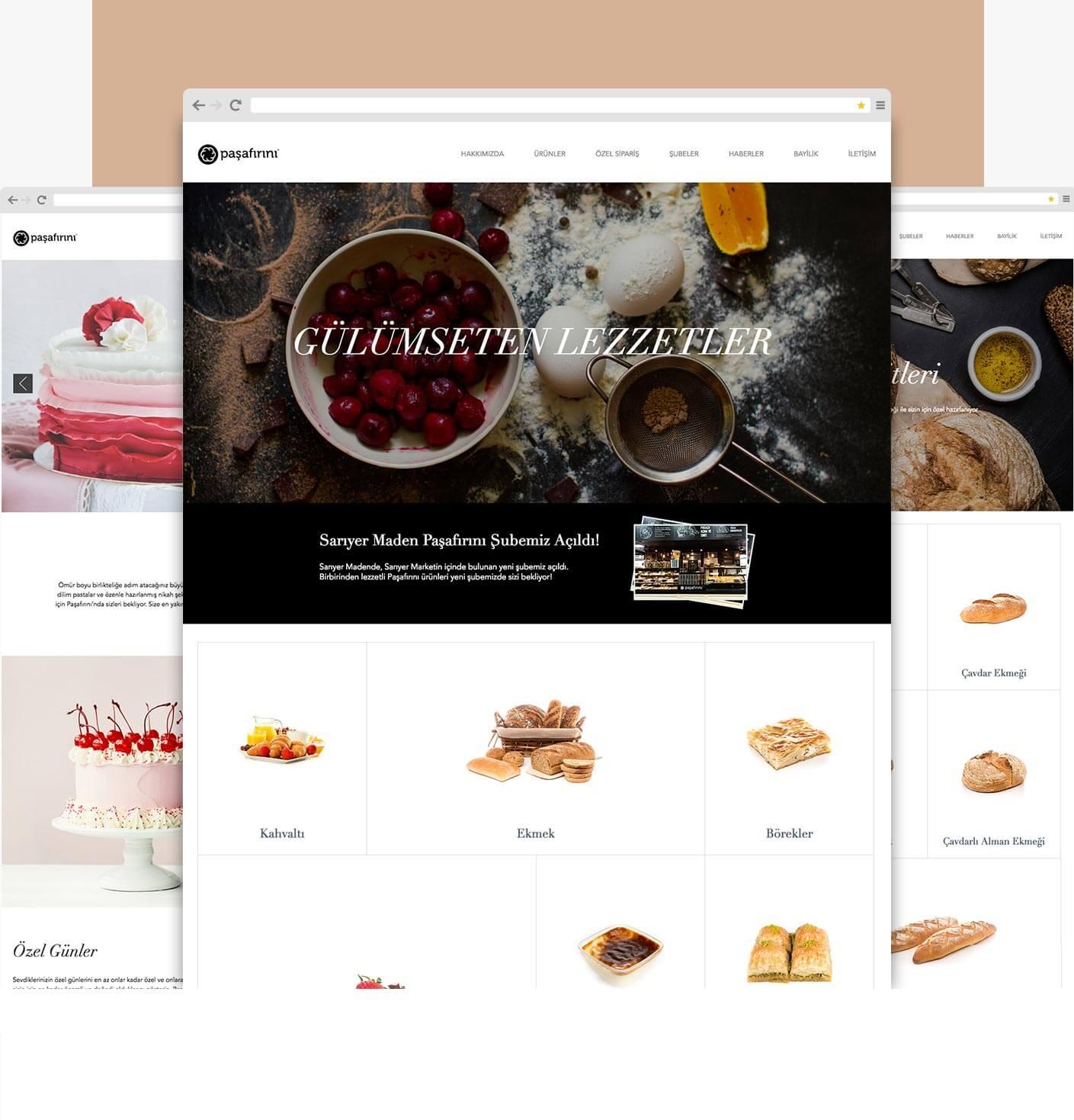 Pasafirini web design, user experience design, UI, UX