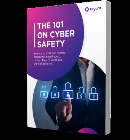 Cyber Safety 101
