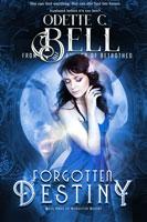 Forgotten Destiny Book Three