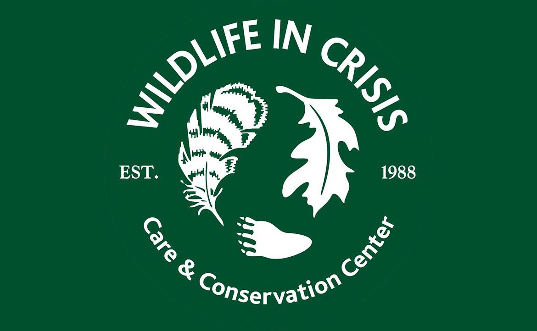 Wildlife In Crisis: Chirp Talks