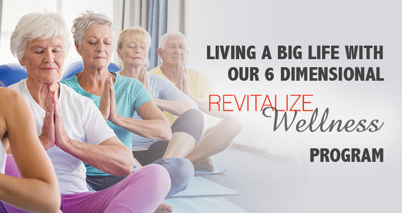Our 6 Dimensions of Wellness webinar