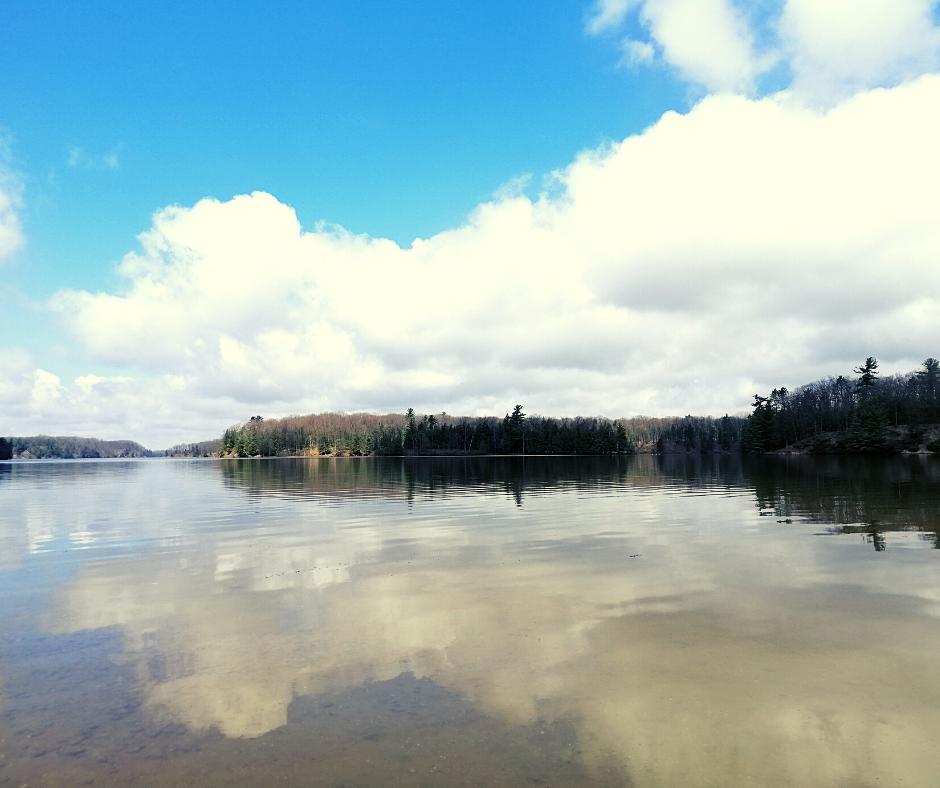 The Tippy Dam Backwaters: A Hidden Gem