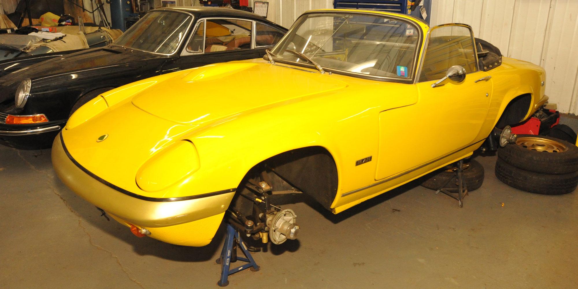 Lotus restoration