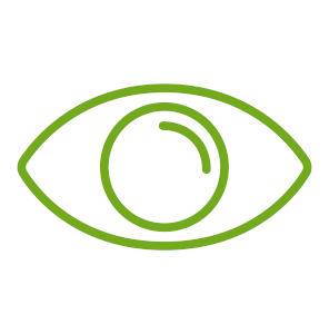 Visual Inspection Icon