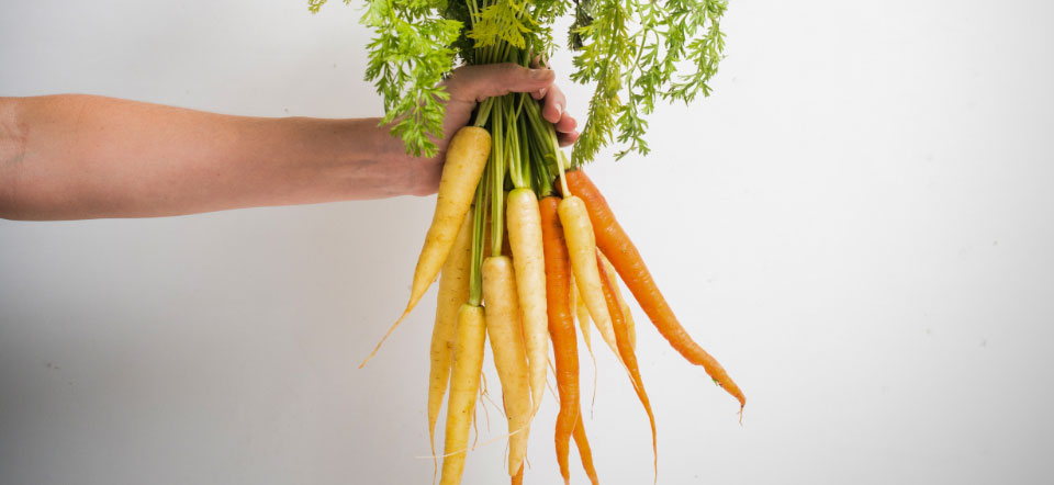 Arm holding a bunch of fresh carrots