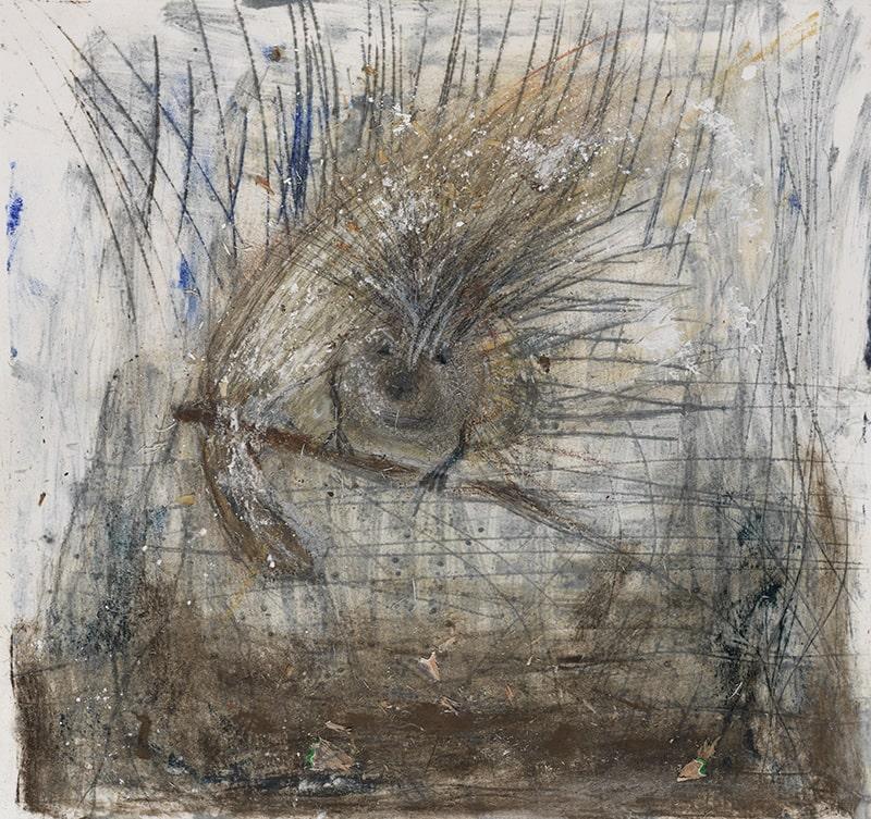 Sylvie Loeb - Livres pour Enfants - Simona - Vol Nocturne