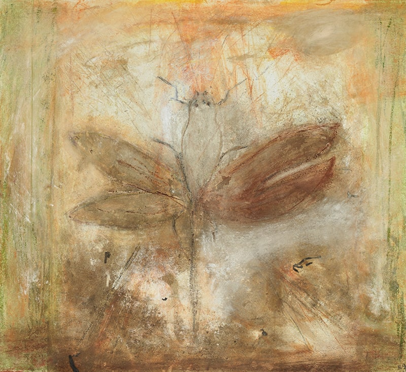 Sylvie Loeb - Peintures & Gravures - Animaux - 5 - Animaux