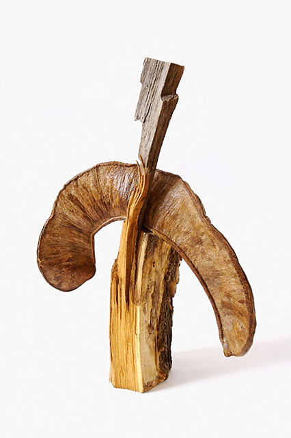 Sylvie Loeb - Sculptures - Nature - 3 - Nature
